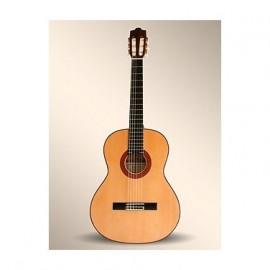 Guitarra Alhambra 10 Fp