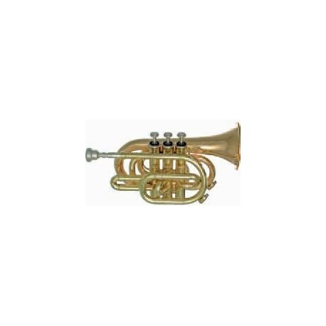 Trompeta Fides Sib Pioneer Pocket Plata BB