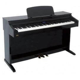 Piano Ringway TG8875 Lacado Negro