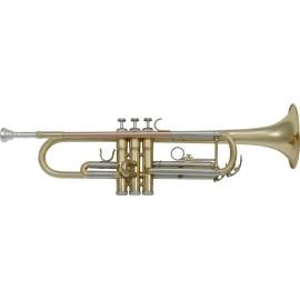 Trompeta SML PARIS TP300 Sib