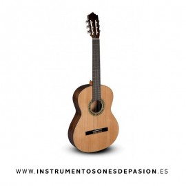 Pack Guitarra Paco Castillo 201 mate